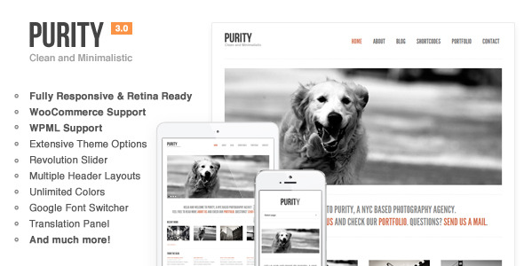 Purity: Responsive, Clean, Minimal & Bold WP Theme