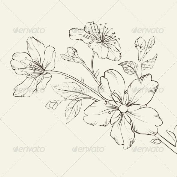 Calligraphy cherry blossom graphicriver
