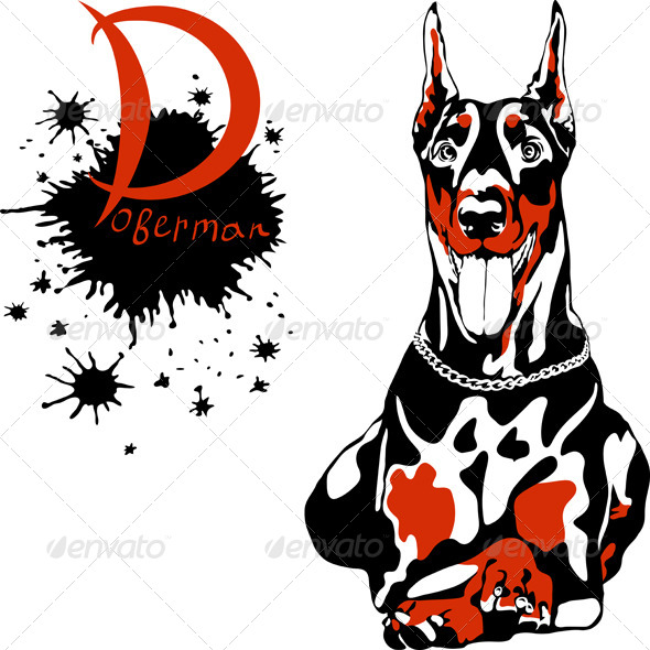 Doberman Pinscher Breed - Animals Characters