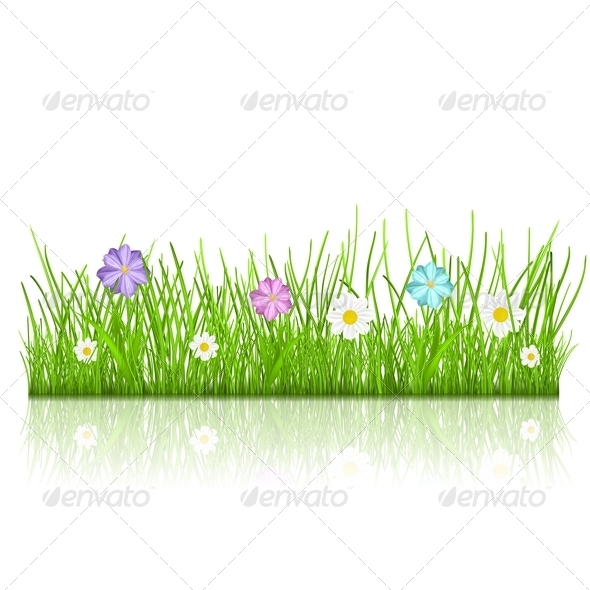 GraphicRiver Grass with Flowers 6815064