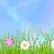 Background with Sky, Grass and Flowers - GraphicRiver Item for Sale