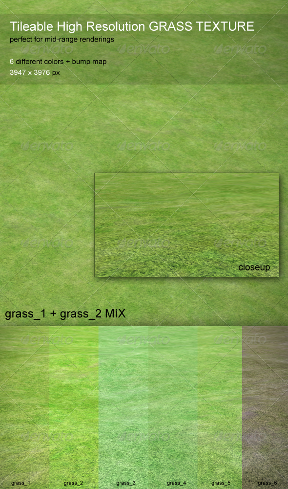 Grass Texture - Tileable, HiRes, 6 Colors - 3DOcean Item for Sale