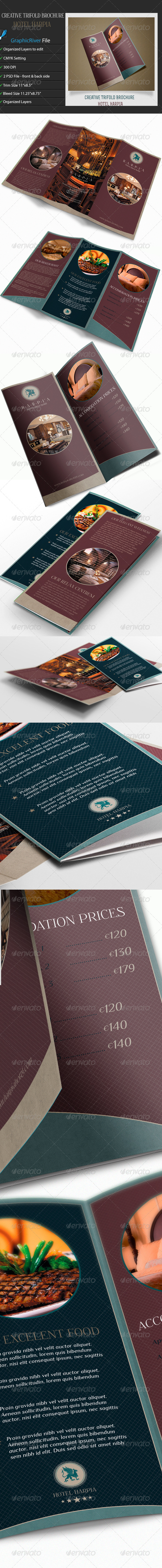GraphicRiver Creative TriFold Brochure 6818260