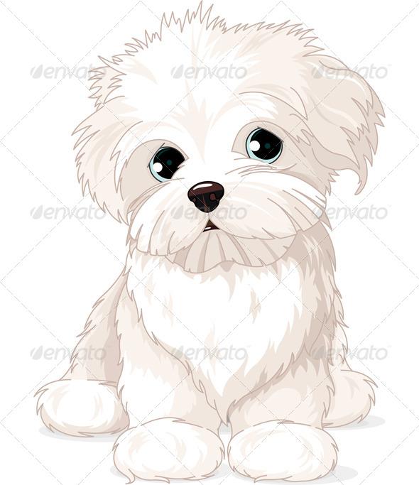 GraphicRiver Maltese Puppy Dog 6840682