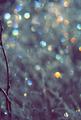 Winter Scene With Spectrum Light Bokeh In Grass - PhotoDune Item for Sale