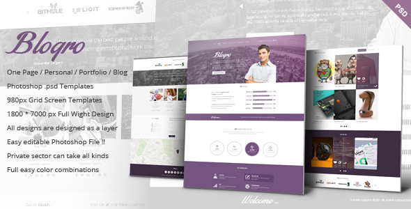 ThemeForest Blogro One page Personal web design 6841925