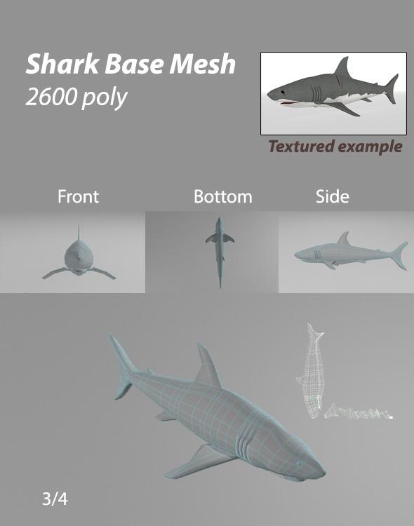 3DOcean Shark BASE MESH 6844371