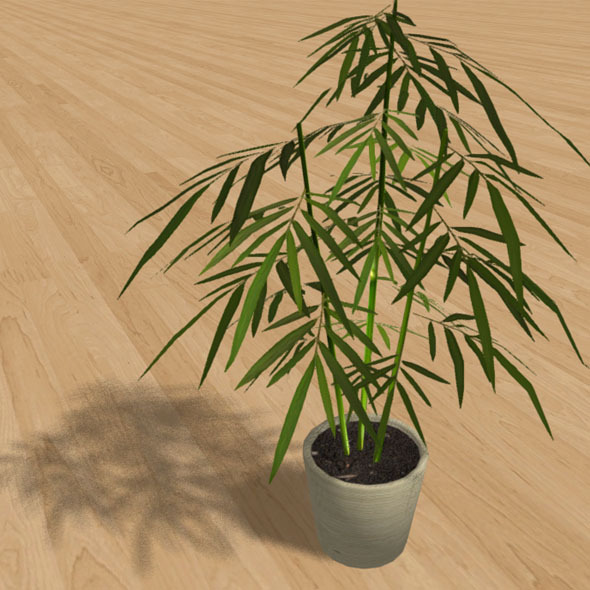 3DOcean Low-Poly Interior Plant Bamboo 6851830