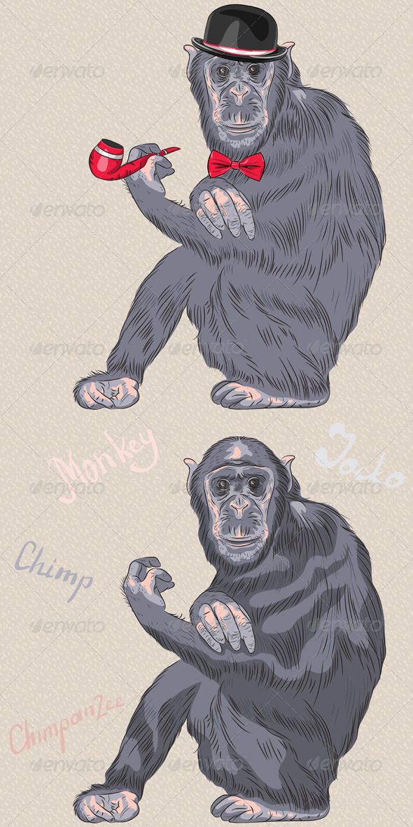 GraphicRiver Hipster Chimpanzee 6857108