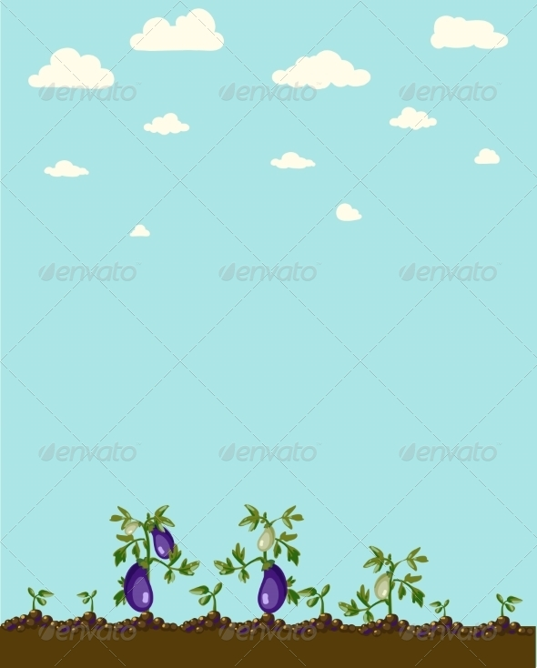GraphicRiver Vintage Garden Banner with Root Veggies 6857966