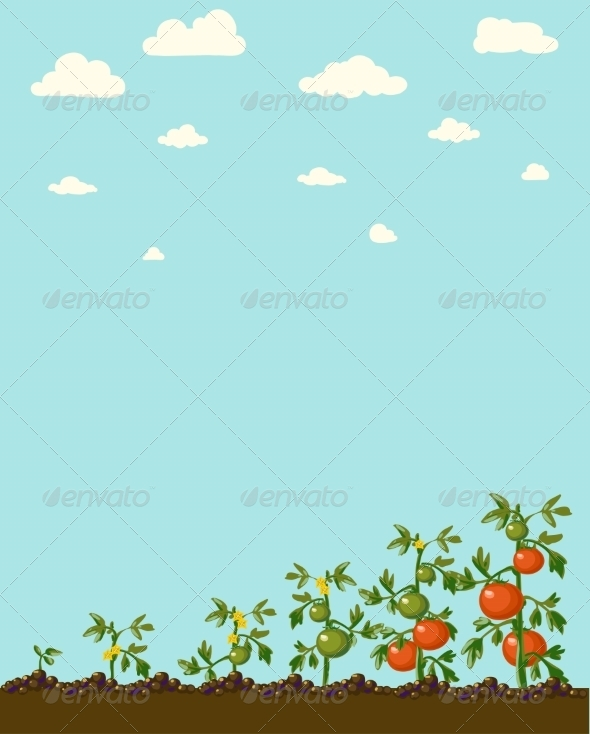 GraphicRiver Vintage Garden Banner with Root Veggies 6857970