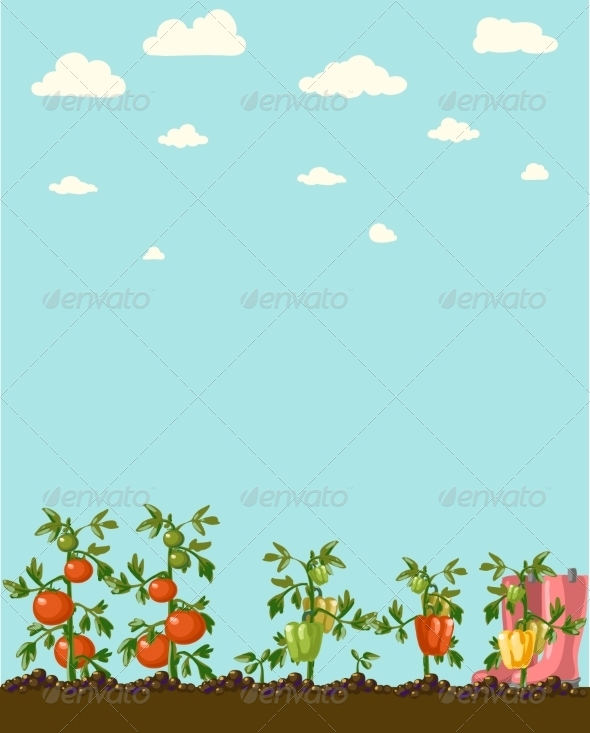 GraphicRiver Vintage Garden Banner with Root Veggies 6857975
