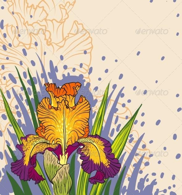 GraphicRiver Iris Flowers 6859474
