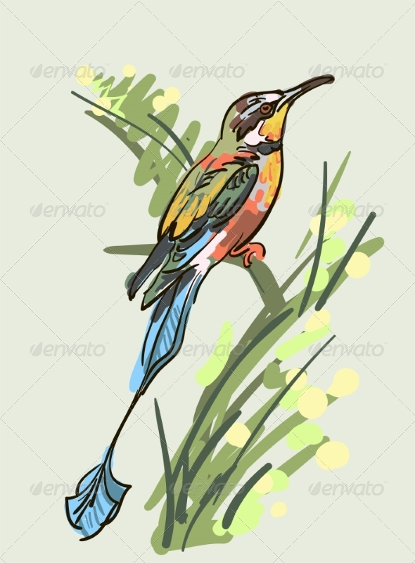 GraphicRiver Bird 6860069
