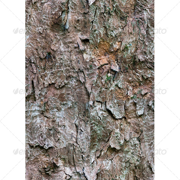 GraphicRiver Tileable Bark Tree Texture 6860456