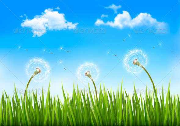 GraphicRiver Nature Background with Dandelions 6863006