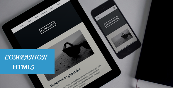ThemeForest Companion Clean and responsive HTML5 template 6864857