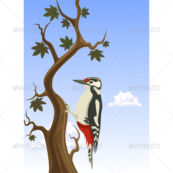 GraphicRiver Woodpecker Clinging to a Tree Trunk 6866395