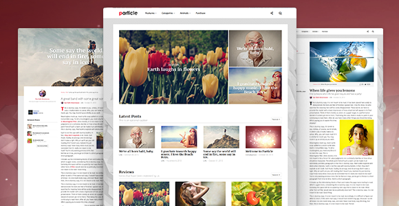 Particle - WP Magazine Theme