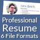 Professional Resume Template Set - GraphicRiver Item for Sale