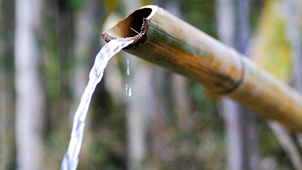 Bamboo Water Feature 01