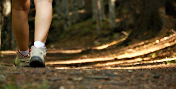 Girl Footsteps In Forest
