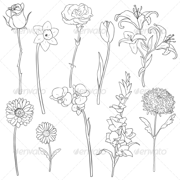 GraphicRiver Vector Set of Outline Flowers 6874332