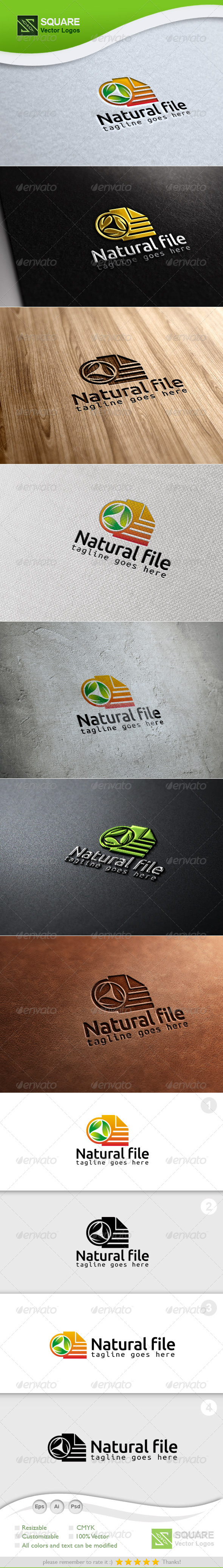 GraphicRiver Leafs File Vector Logo Template 6878262