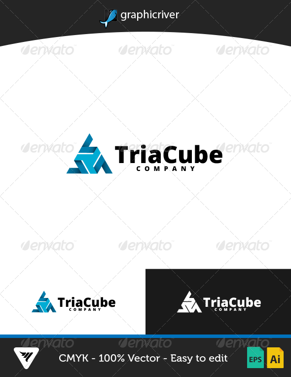 GraphicRiver TriaCube Logo 6881443