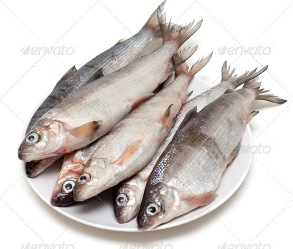 Fresh fish whitefish on plate - Stock Photo - Images