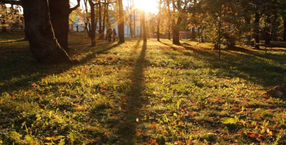 Sunset in a Park in Autumn 02