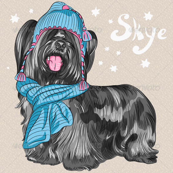 Hipster Dog Skye Terrier Breed - Animals Characters