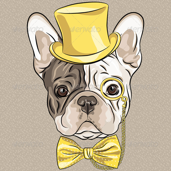 Vector hipster dog French Bulldog breed - Animals Characters