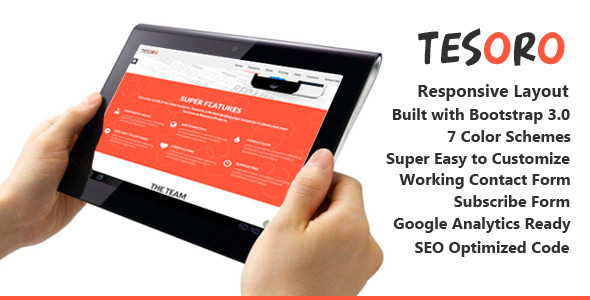 ThemeForest Tesoro Super Simple Landing Page 6897204
