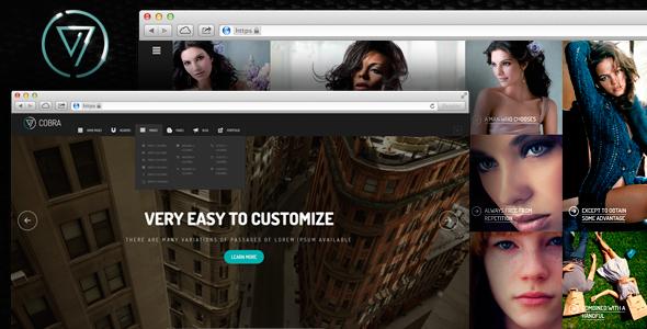 ThemeForest Cobra Portfolio & Photography WordPess Theme 6897826