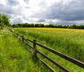 Springtime - PhotoDune Item for Sale