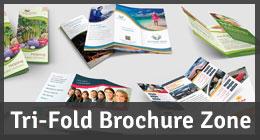 Tri-Fold Brochure Zone
