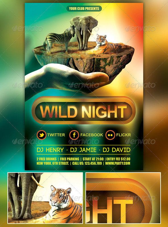 GraphicRiver Wild Night Party Flyer 6903999
