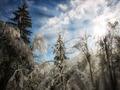 Winter sunlight - PhotoDune Item for Sale