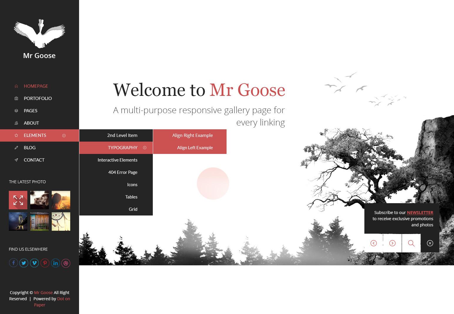 Mr Goose - Creative PSD Template - Desktop - Home Page