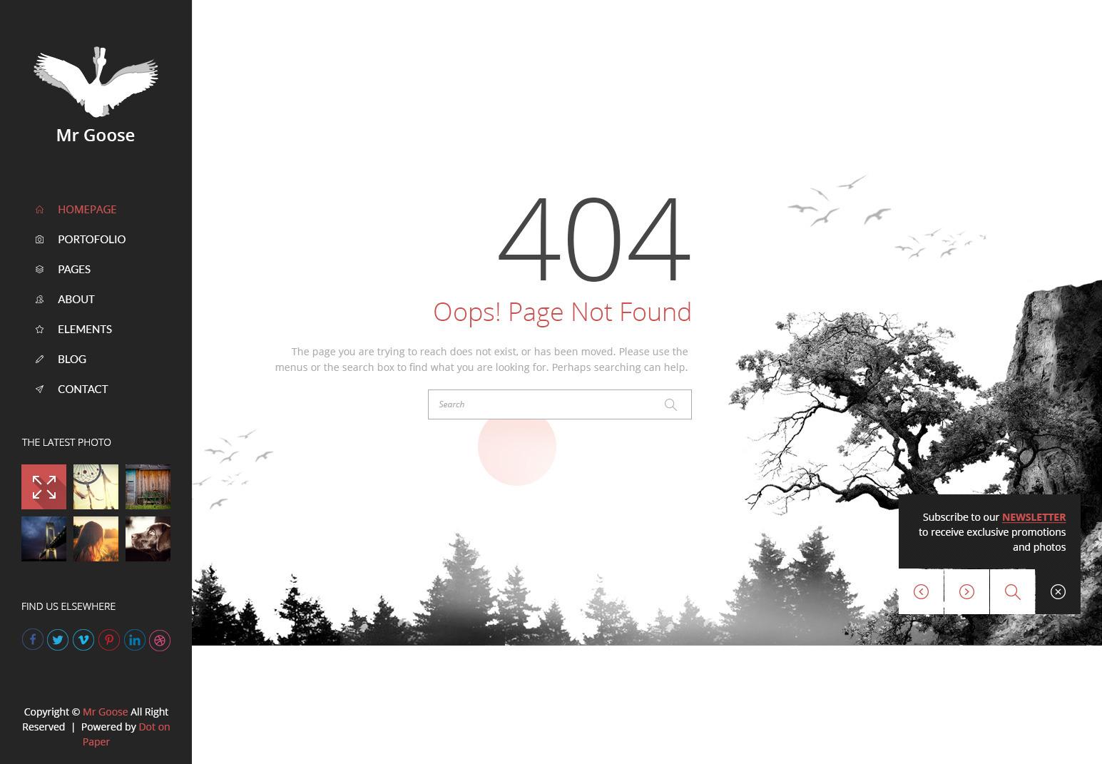 Mr Goose - Creative PSD Template - Desktop - 404