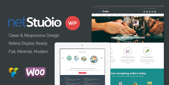 Netstudio - Premium Multipurpose Responsive Theme  - Business Corporate