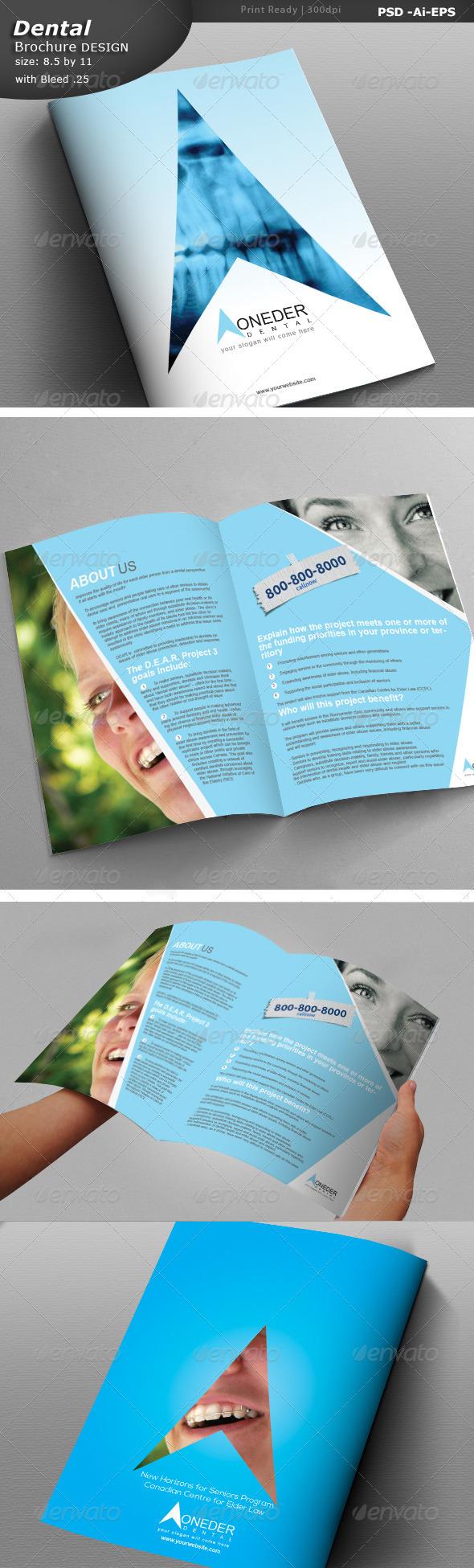 Dentist Brochure Design