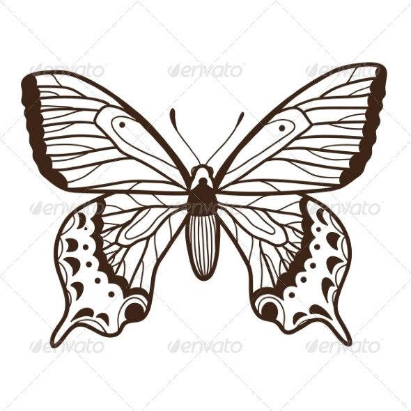 GraphicRiver Abstract Graphic Butterfly 6941133