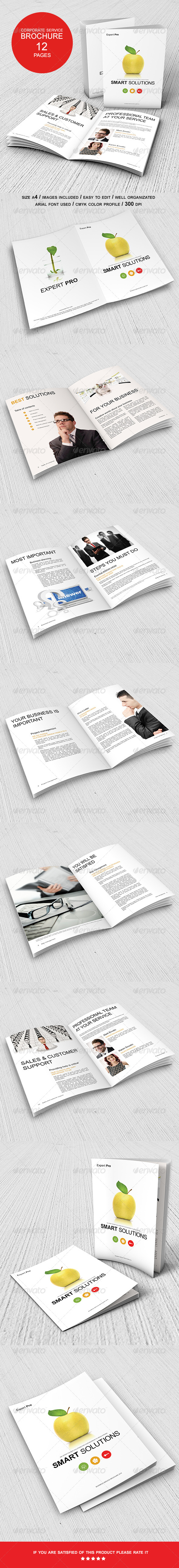 GraphicRiver Corporate Management Solutions Brochure 6941482