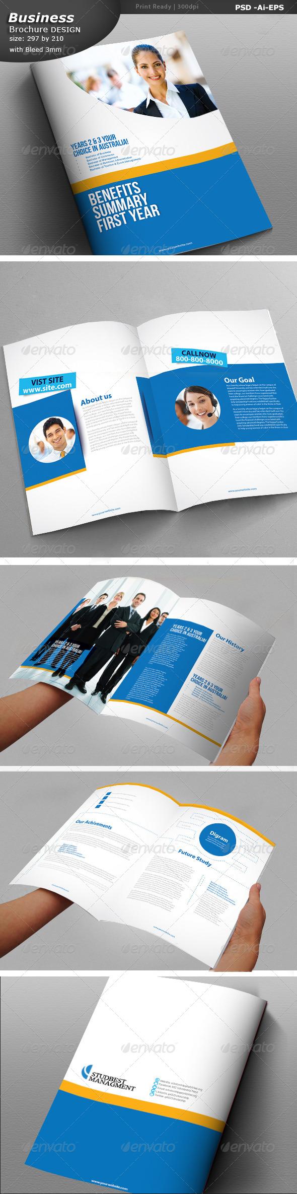 GraphicRiver Business Brochure Design 6913055