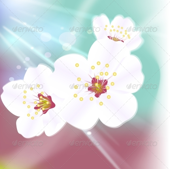 GraphicRiver Flower Background 6953192