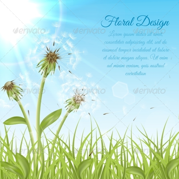 GraphicRiver White Dandelions on Green Grass 6958909