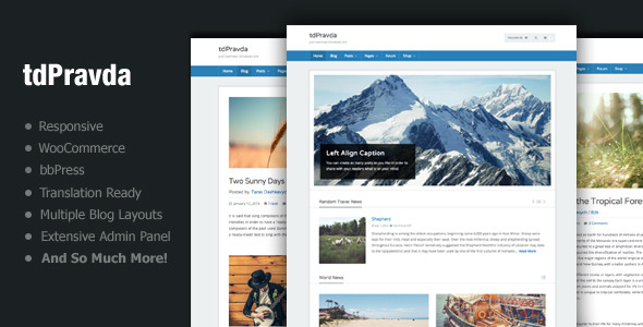 tdPravda - Responsive WordPress Theme