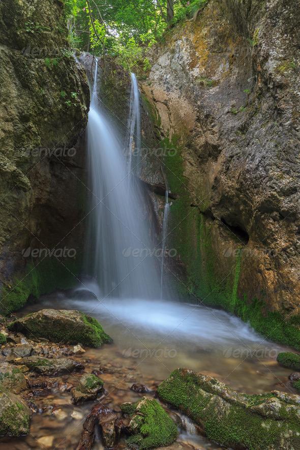 stream in Gorge Tasnei. Baile Herculane, Romania  - Stock Photo - Images